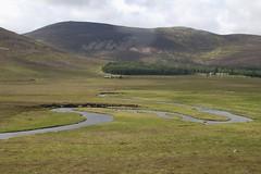 Spittal of Glen Muick (Ren Mouton) Tags: vacation holiday d50 scotland vakantie nikon aberdeenshire beek hiking walk grampians nikond50 brook lochnagar wandeling schotland munro deeside zomervakantie lochmuick balmoralestate 20072008 flickrchallengegroup flickrchallengewinner splendidscotland schitterendschotland beinnchochan caccrnbeag spittaloflochmuick