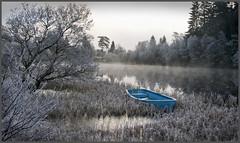 Blue Boat (kenny shields) Tags: blue winter scotland boat nikon scenery frost d300 lochard