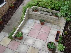 DSC02305 (doranandrew) Tags: home garden berkhamsted