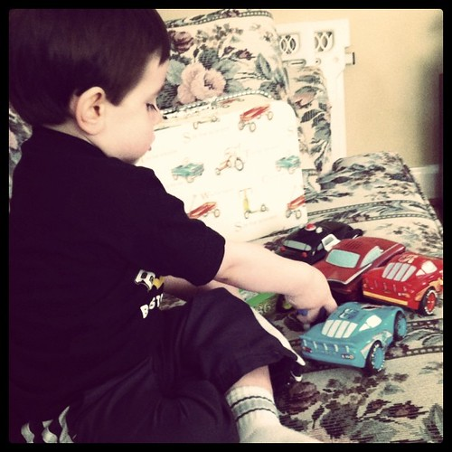 [134/365] A Boy and His Cars