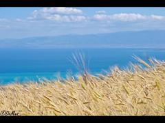 Discover the Mediterranean... (DomenicoM82) Tags: italy parco del al italia pentax da sdm if smc alto calabria f4 k5 nazionale cosenza jonio ionio pollino trebisacce 1770mm