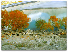 khaplu,skardu ,pakistan (TARIQ HAMEED SULEMANI) Tags: autumn mountains tourism nature trekking hiking tariq skardu astore the4elements khaplu concordians sulemani