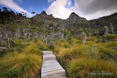 Cradle Mountain 28 Feb 2014 IMG_0589 1050 (Magic Light Photos) Tags: landscape tasmania dovelake cradlemountain