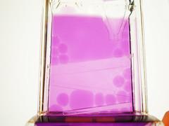 purple (miss insomnia tulip) Tags: orange toy movement pretty purple spin bubble slope gog