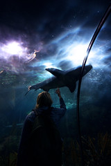 Two worlds (Villi.Ingi) Tags: blue fish water girl danger swimming canon dark aquarium shark looking reaching touch watching wideangle explore tenerife 1020mm touching glide loroparque pipc 40d superbmasterpiece gwain betterthangood world100f