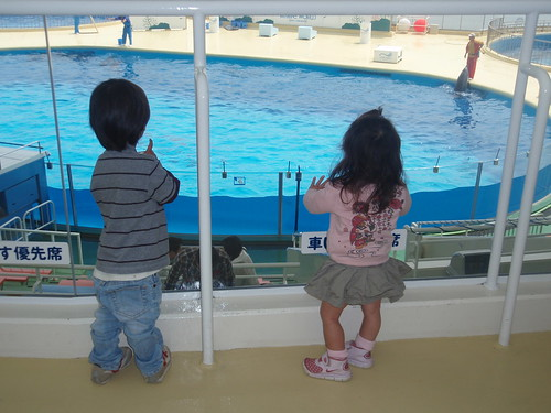 checking out the show pool