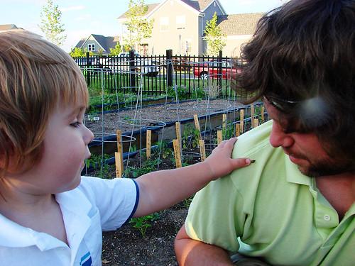 it's OK, dad, it's just a ladybug.