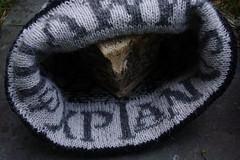 knit_mantinia2