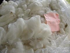 Cormo fleece