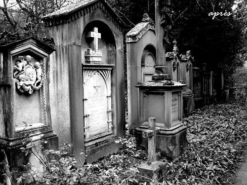 Alter Friedhof Freiburg 10