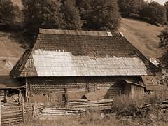 Old and lonely (Tara MM) Tags: wood house abandoned sepia tara case romania sat transylvania maison transilvania fa bois ancienne haz maramures vechi ardeal lemn passionphotography