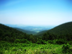 In the Valley (wenzday01) Tags: park travel wallpaper nature topv111 photoshop canon virginia nationalpark topv333 fake va shenandoah shenandoahvalley 43 fullscreen shenandoahnationalpark tiltshift canonsd450 sd450 faketiltshift