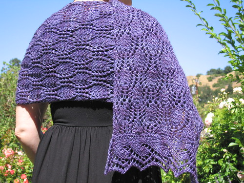 Hardenburgia Shawl