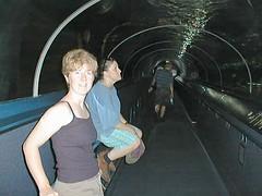 Sydney Aquarium Tunnel
