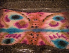 Butterfly painted sock blank