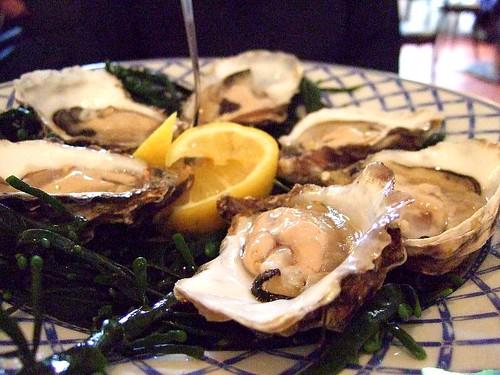 Fishy Fishy oysters