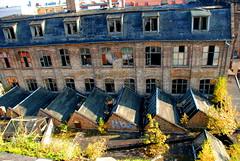 Halle - Gravo Druck - 2816_9 (wanus) Tags: abandoned ruins urbanexploration halle urbex modernruins sachsenanhalt