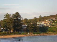 The surroundings (cobalt.penguin) Tags: beach dunes sydney peninsula avalon barranjoey