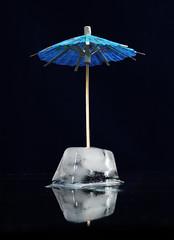 Umbrella (jæms) Tags: black reflection ice umbrella canon studio frozen 5 five competition entry photo5 remoteflash strobist