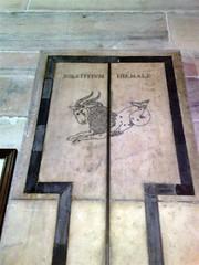 Smbolo de aries (proyectos humanistas) Tags: italia catedral duomo miln