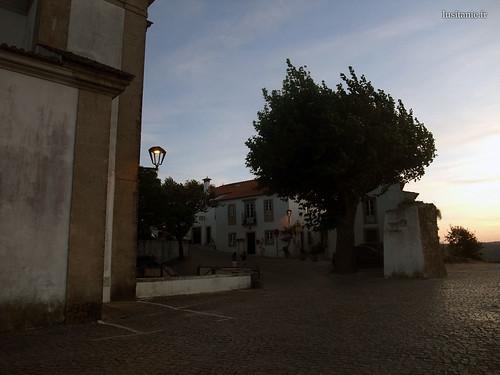 Antiga arvore na praça, frente à igreja