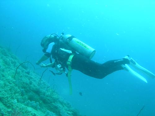 Dive Sites (Sumilon Island)_1