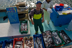 Fresh hope for world's fisheries