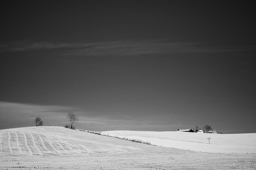 Black And White Landscape Pictures. Black and White (Group)