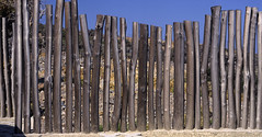 Wooden fence (kkitsos) Tags: wood blue light sky design wooden cut decoration dry architectural bark environment curt constructional