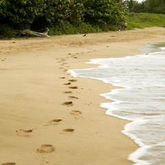 Footprints in the sands of Maluaka Beach in South Maui.