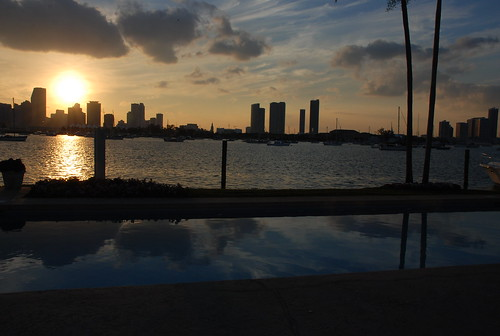 from hibiscus island, miami
