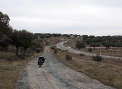 Extremadura 004