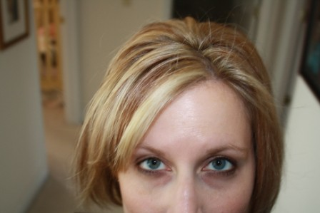 blonde highlights and lowlights on brown hair. Do