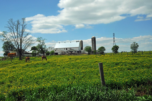 Lancaster, PA in Spring