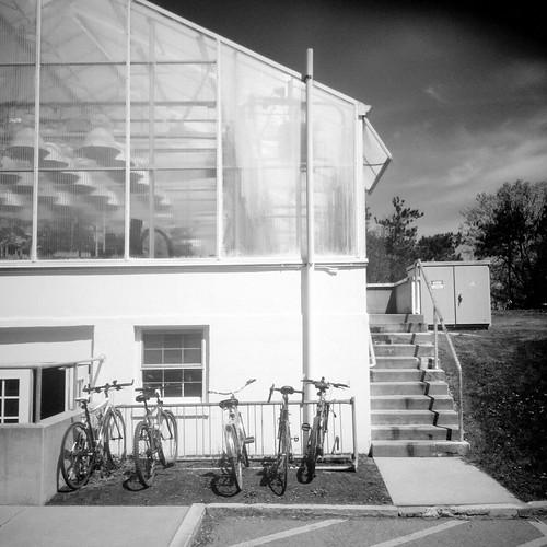 Greenhouse Bikes