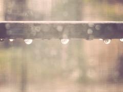 365.053 - Through the window... (Lady Blackice) Tags: window water glass rain canon project drops may g5 finestra 365 acqua pioggia maggio vetro gocce 2011 project365 canonpowershotg5 365project
