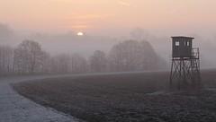 (:Linda:) Tags: pink sun mist sunrise germany dawn village thuringia soil pinksky baretree veilsdorf hochsitz huntersperch