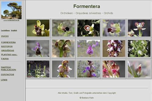 Naturaleza en Formentera