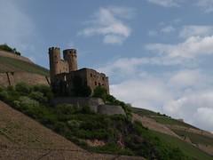 Rhine River Apr 08 090 (MurphMutt) Tags: castle germany rhineriver