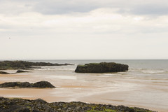 Beach (4)