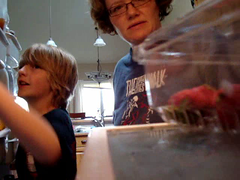 Friget (Mary-Cakes) Tags: food kitchen beer video fridge strawberries sherry refrigerator watermellon friget