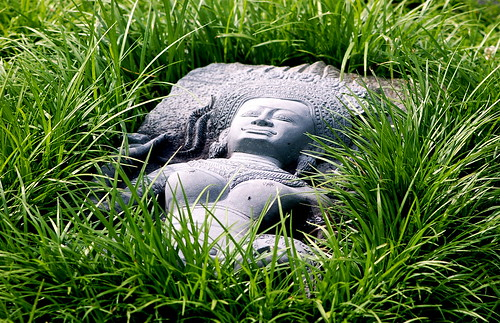 Sculpture in the grass... with a fly