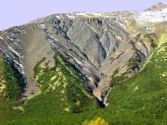 Lawinenhänge im Prättigau ob Laret (www.swissfot.ch) Tags: schweiz erosion tourismus schäden graubünden prättigau katastrophen kahlschlag rodung lawinen skigelände