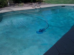 there's this thing that cleans the pool (alist) Tags: alist robison alicerobison 85018 ajrobison