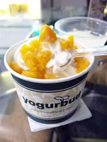 Yogurbud frozen yogurt