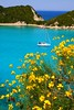 Blue bay and yellow broom (Marite2007) Tags: flowers sea seascape nature water landscape greek islands spring scenery heaven paradise day view natural blossom shoreline hellas sunny scene location greece coastal destination environment serene nautical aquatic bays idyllic heavenly scenics paxos generic dreamscape destinations ionian paradisiacal