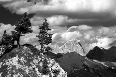 Camino a Dolomitas (jtsoft) Tags: bw mountains landscape italia olympus dolomiti marmolada e510 catinaccio puntapenia jtsoftorg zd1260mmswd
