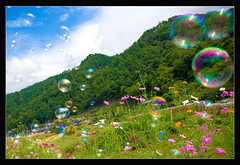 Floating through the Cosmos (TheJbot) Tags: flowers sky mountain green field japan bubbles jbot lightroom thejbot