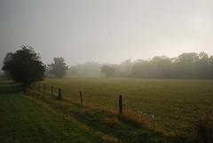 Sunday Morning Mist (jactoll) Tags: morning mist fog nikon best warwickshire d60 digitalcameraclub inspiredbylove abigfave platinumphoto anawesomeshot weethley theperfectphotographer goldstaraward