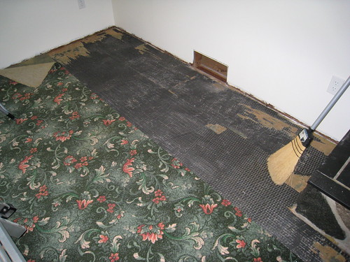 The carpet is not coming up so easily